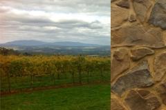 SIR PAZ (Winery Cellar Door, Yarra Valley)